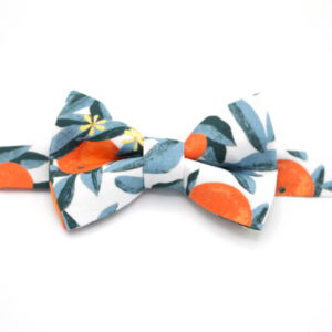 noeud papillon fruit feuilles orange bleu
